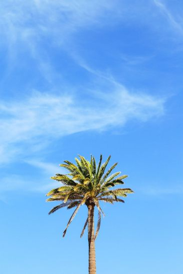 Windmills, Mountains, Little Farms And Sleepy Towns... In Fuerteventura, The Canary Islands (25)
