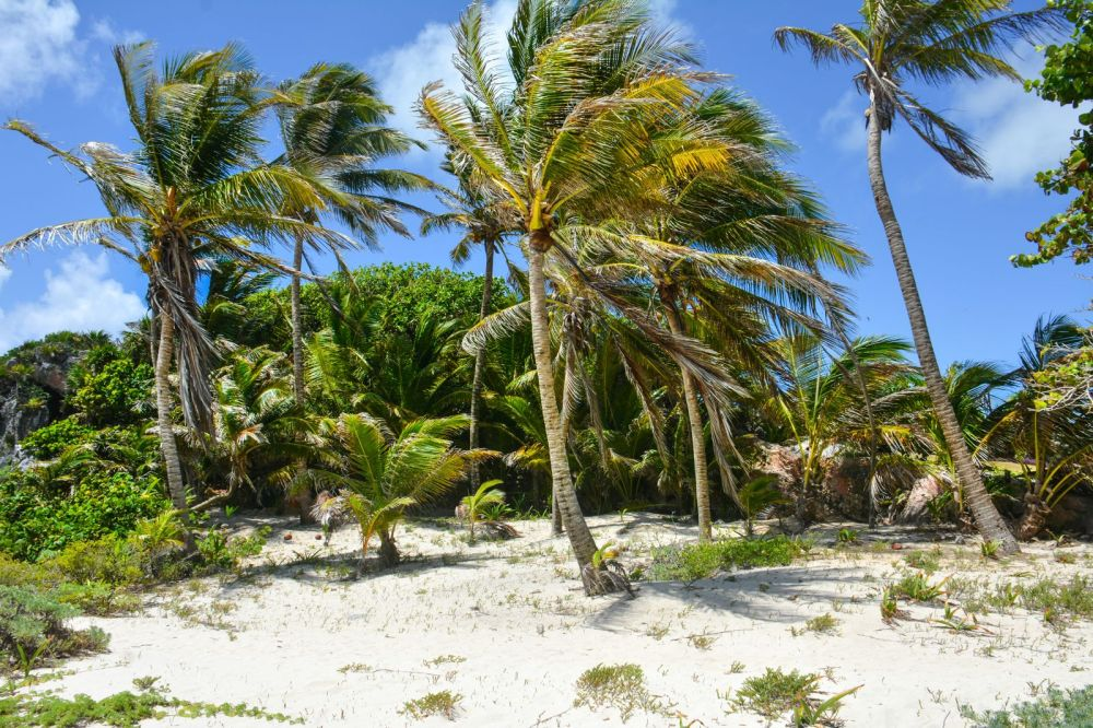 What Every Visitor Must Know About Visiting Tulum in Mexico (4)
