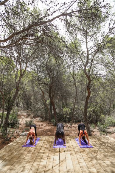 This Is Your Oasis Of Calm In Ibiza - Soulshine Yoga Retreat (14)