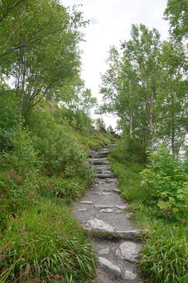 Things To See In Alesund in Norway (32)