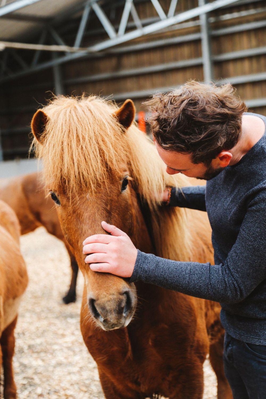Horse Riding In The Faroe Islands... (45)