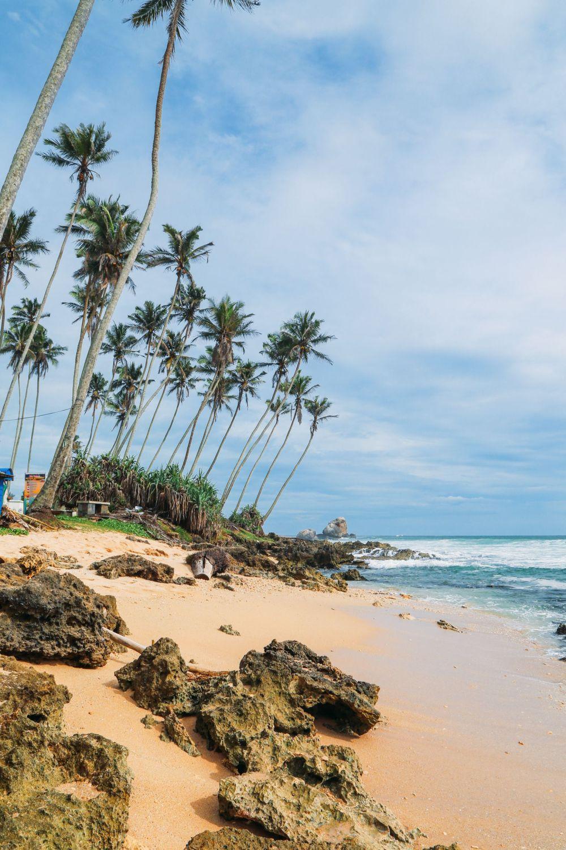 A Taste Of Sri Lanka... (12)