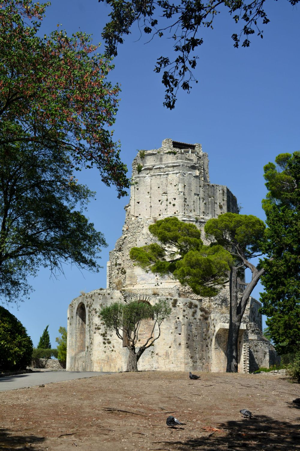 Have You Ever Heard Of The Beautiful French Town Of Nimes ? (30)