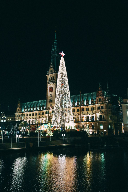 Christmas Market Fun In Hamburg, Germany… (16)