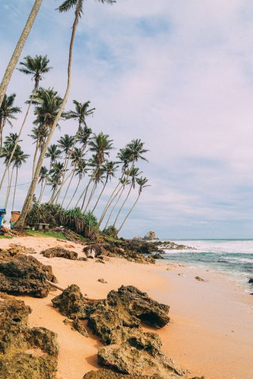 The Ancient Tradition Of Stilt Fishing… In Sri Lanka (29)