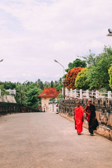 Exploring Beruwala And Bentota, Sri Lanka (7)