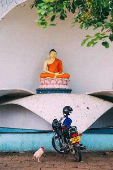 Exploring Beruwala And Bentota, Sri Lanka (19)