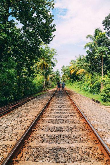 Exploring Beruwala And Bentota, Sri Lanka (28)
