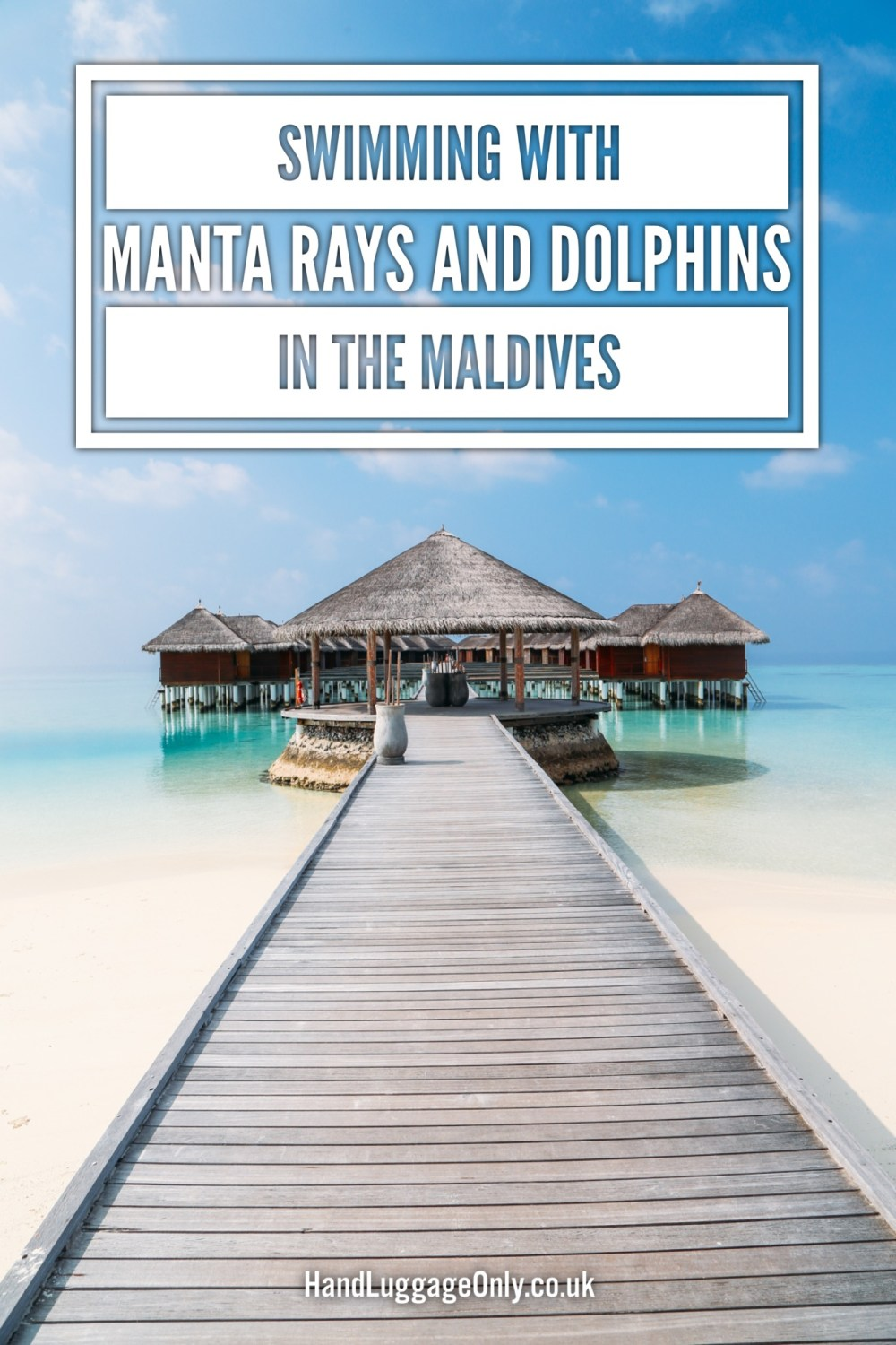 Swimming With Manta Rays And Dolphins In The Maldives (2)