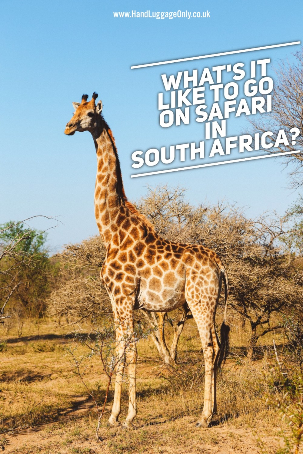 What's It Like To Go On Safari In Kruger National Park, South Africa? (2)