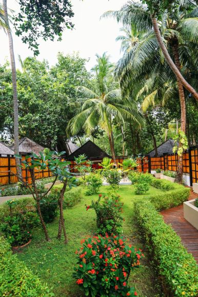 The View From Above... At The Angsana Velavaru Maldives (31)