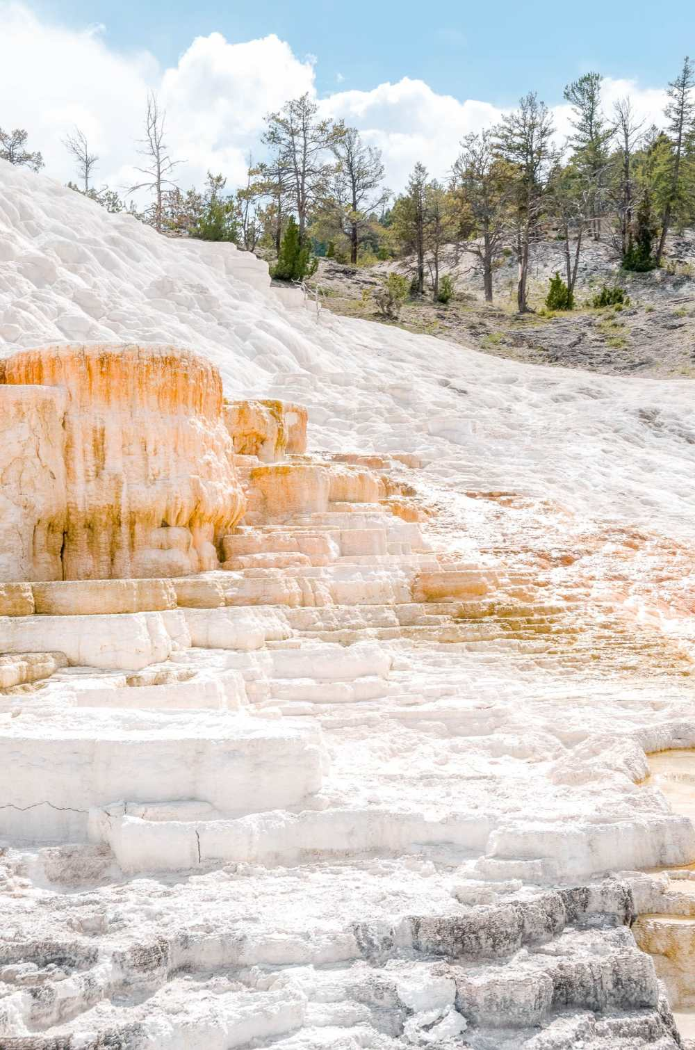Best Things To Do In Yellowstone National Park (6)