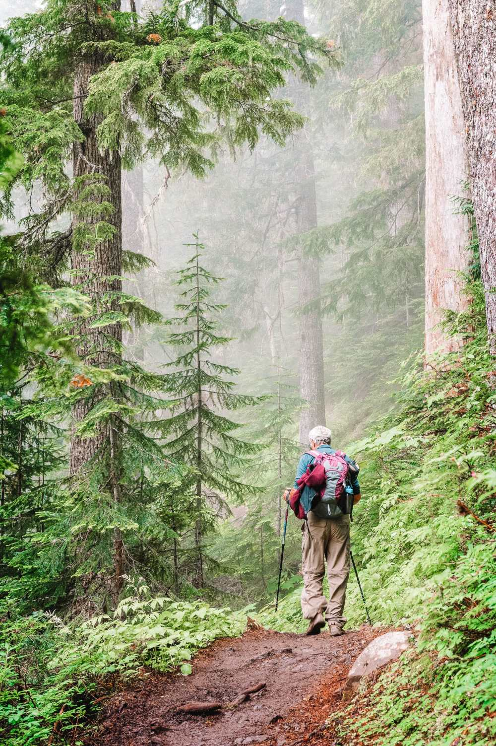 Best Hikes In Washington State (6)