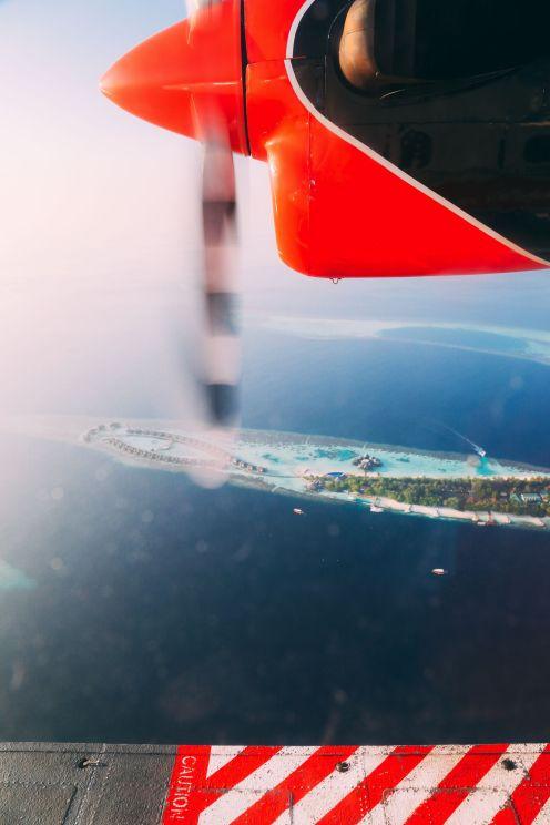 Maafushivaru, Birthing Dolphins And Swimming With Manta Rays... In The Maldives (5)