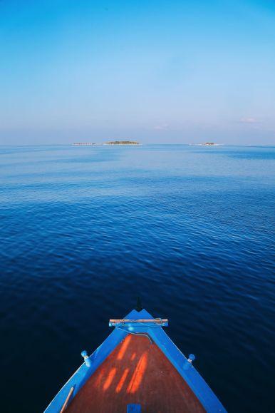 Maafushivaru, Birthing Dolphins And Swimming With Manta Rays... In The Maldives (7)