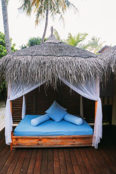 Maafushivaru, Birthing Dolphins And Swimming With Manta Rays... In The Maldives (20)