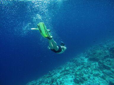 Maafushivaru, Birthing Dolphins And Swimming With Manta Rays... In The Maldives (59)