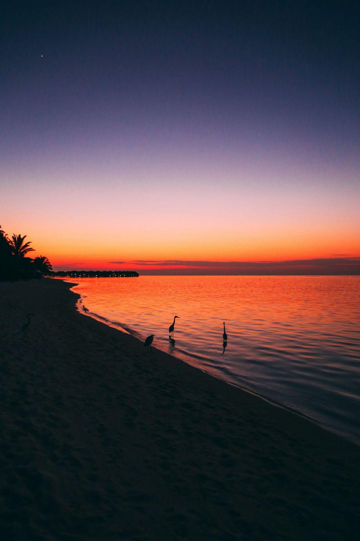 Sunshine and Island Hues... At Velassaru Maldives (48)