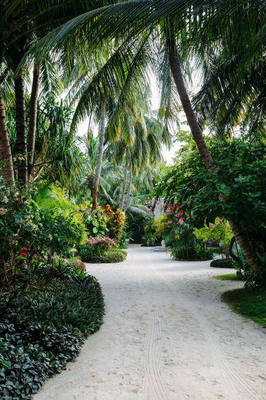 The Long Island Of Kuramathi... In The Maldives (40)