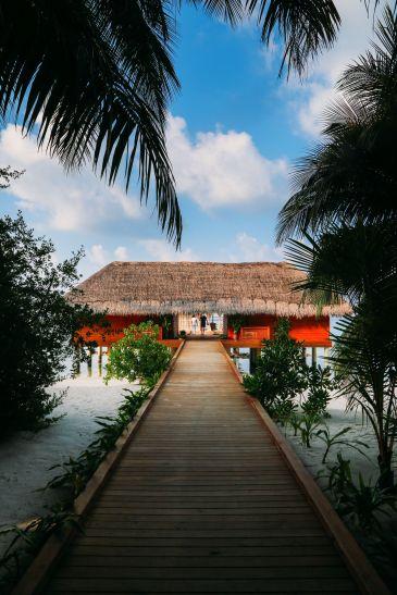 The Long Island Of Kuramathi... In The Maldives (49)