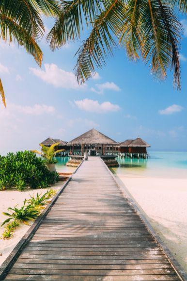 On Island Time… In Maafushivaru, Maldives (4)