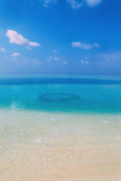 On Island Time… In Maafushivaru, Maldives (11)