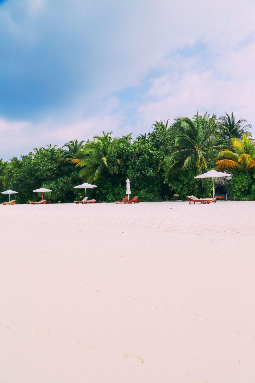 On Island Time… In Maafushivaru, Maldives (13)