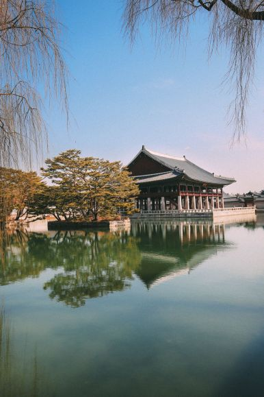 Photographs And Postcards... From Seoul, South Korea (21)