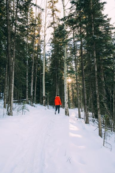 The Amazing Beauty Of Jasper National Park... In Alberta, Canada (45)