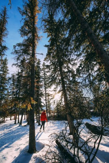 The Amazing Beauty Of Jasper National Park... In Alberta, Canada (52)