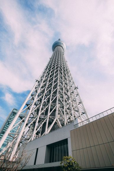 Photographs And Postcards... From Tokyo, Japan (11)