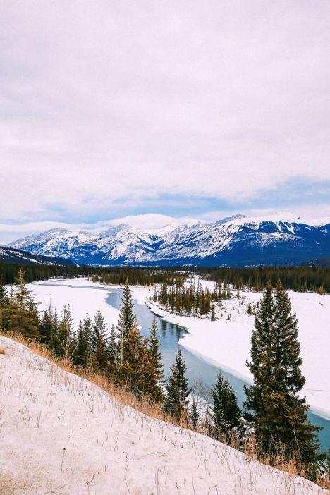 Dog Sledding In Jasper And Ice Hockey In Edmonton - 2 Canadian 'Must-Do's! (43)
