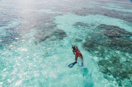 Swimming With Wild Turtles And Those Amazing Island Colours... At Kandolhu Island, Maldives (35)
