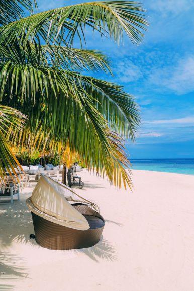 Swimming With Wild Turtles And Those Amazing Island Colours... At Kandolhu Island, Maldives (58)