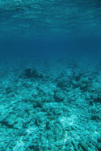 The Perfectly Lazy Day... In Kuramathi Island Maldives (6)