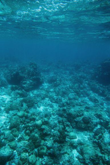 The Perfectly Lazy Day... In Kuramathi Island Maldives (11)