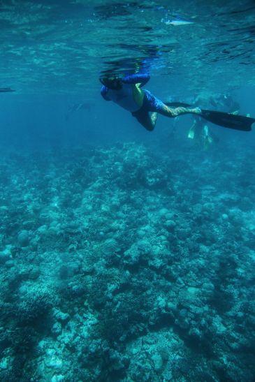 The Perfectly Lazy Day... In Kuramathi Island Maldives (15)