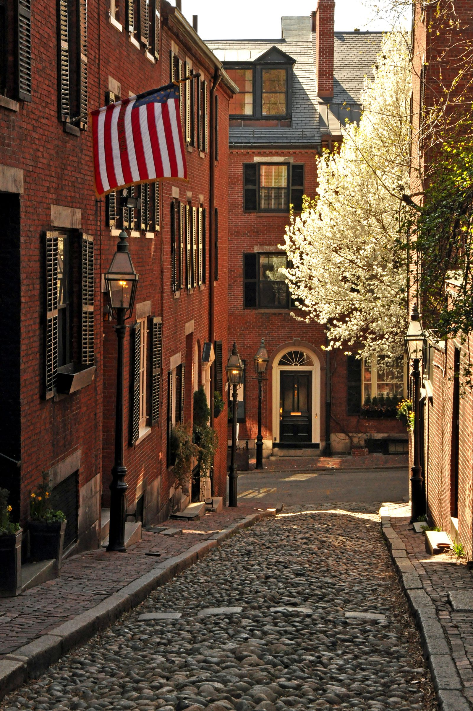 11 Fantastic Things To Do And See In Boston, USA (13)