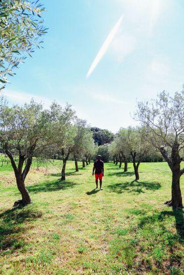 Vineyards, Seasides And Tapas... In Menorca, Spain (49)