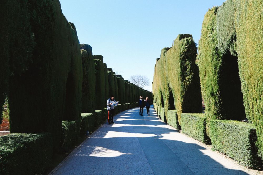 The Amazingly Intricate Alhambra Palace of Spain (9)