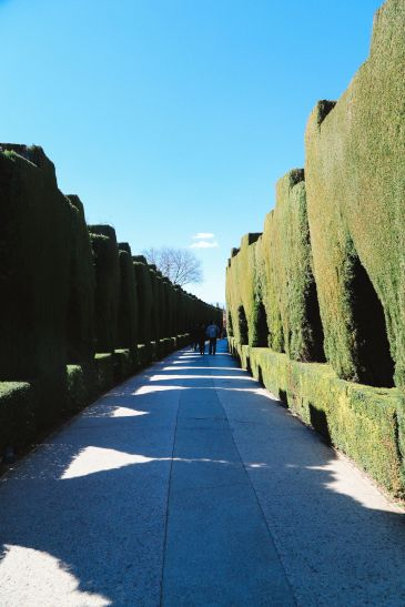 The Amazingly Intricate Alhambra Palace of Spain (11)