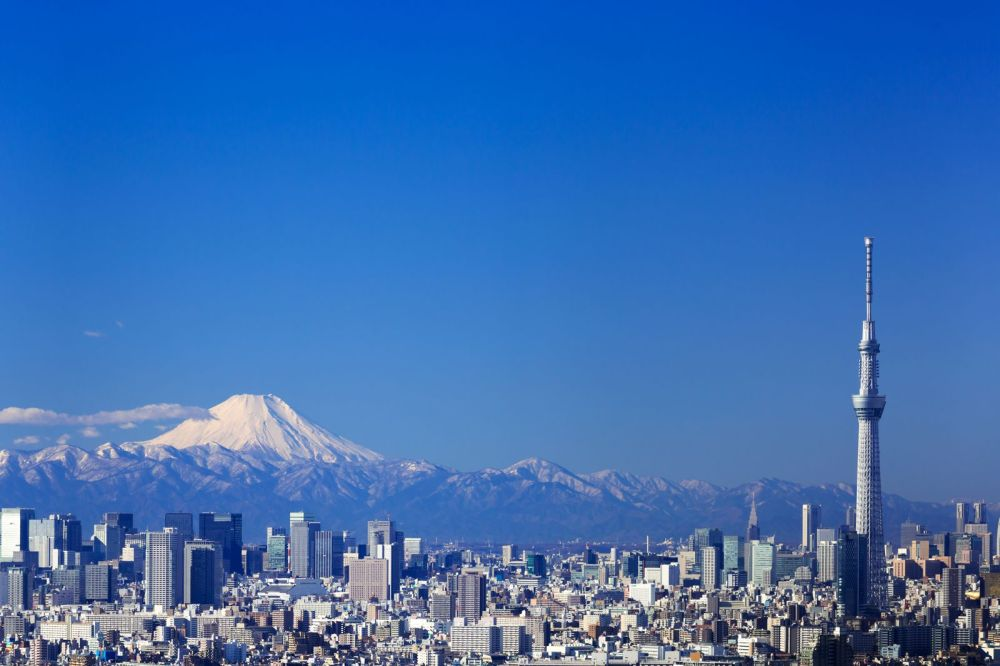 18 Fun Things You Have To See And Do In Tokyo (3)