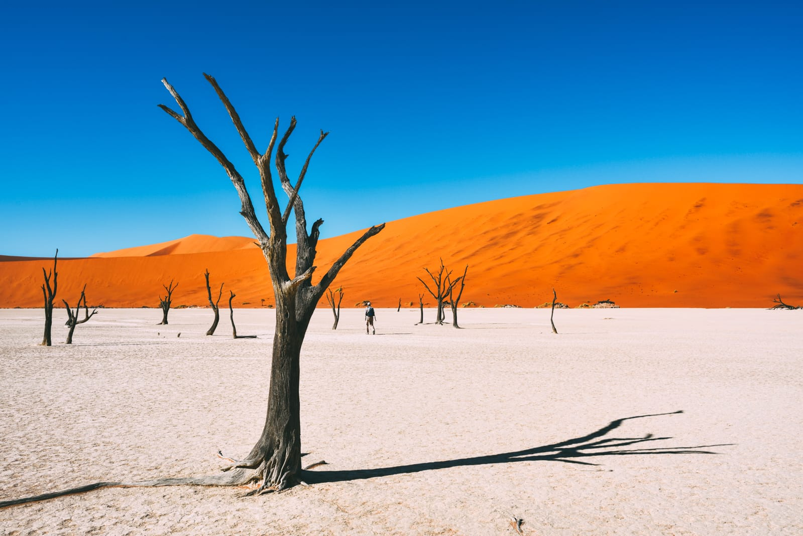 11 Beautiful Places You Have To See In Namibia (9)