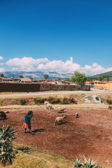 The Journey Up To Machu Picchu Village - Aguas Calientes, Peru (15)
