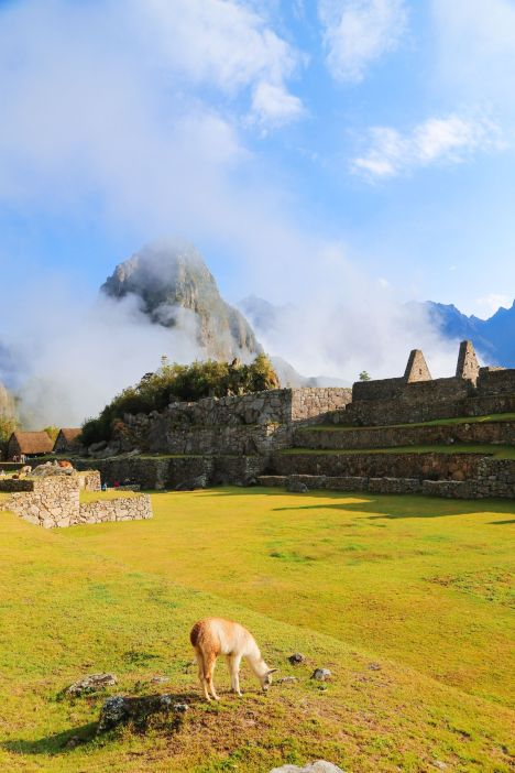 Visiting The Ancient Inca Site Of Macchu Picchu, Peru (38)