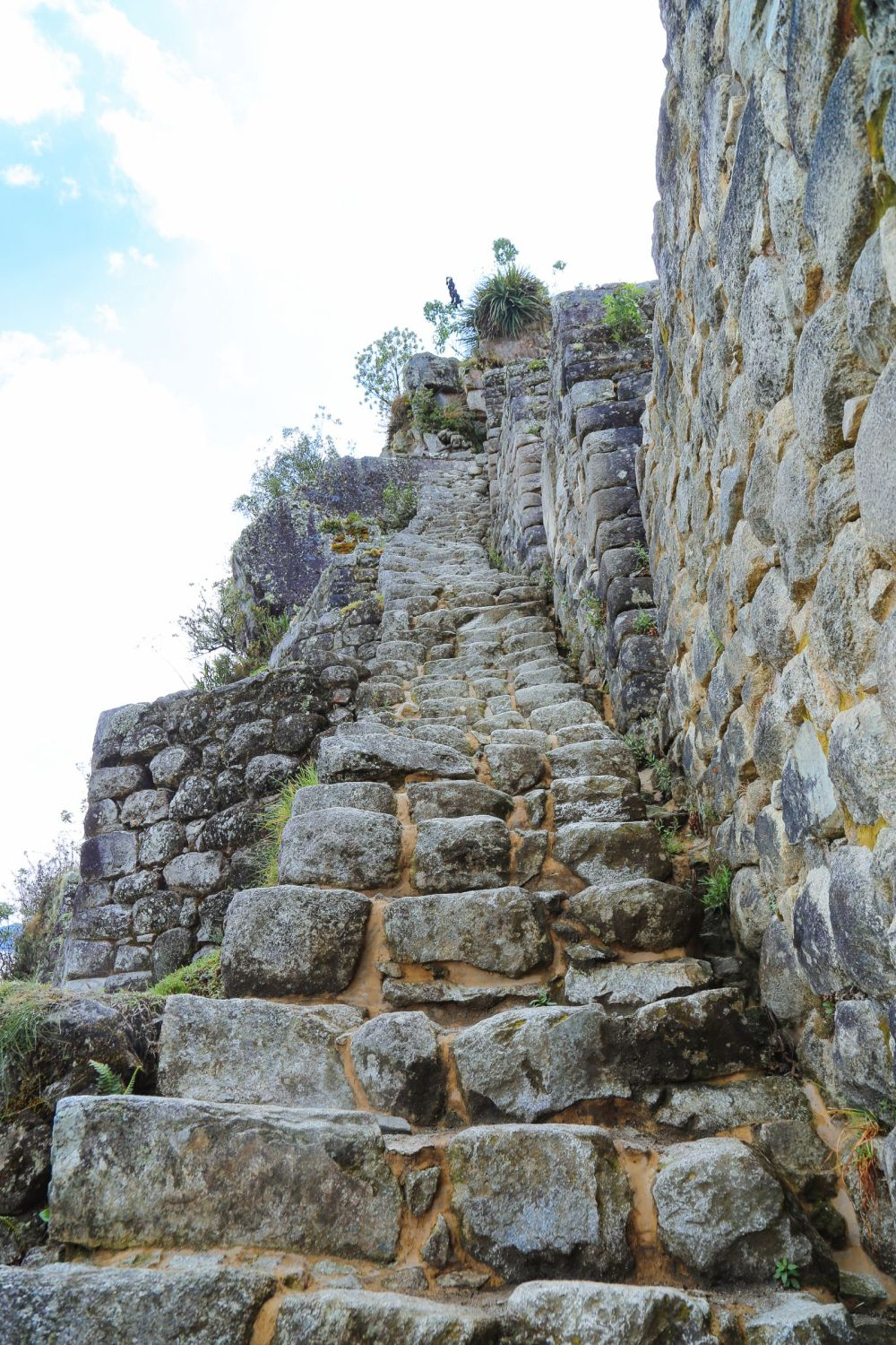 This Is The Most Unique View Of Machu Picchu – At The Top Of Huayna Picchu Mountain (19)