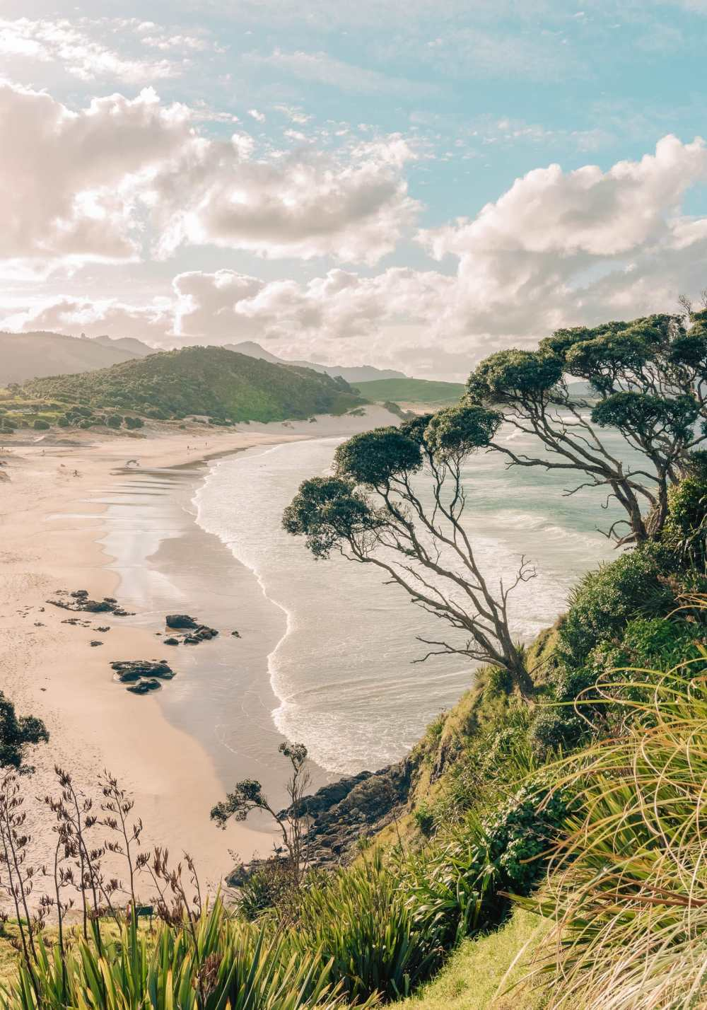 Best Hikes In New Zealand (3)
