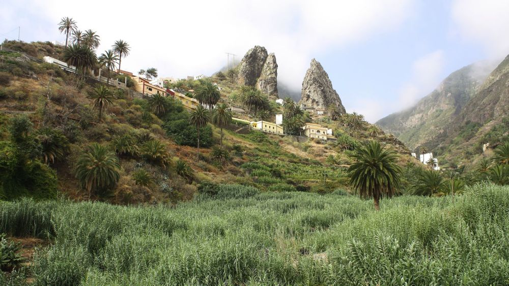 24 Things To See And Do In The Canary Islands (11)