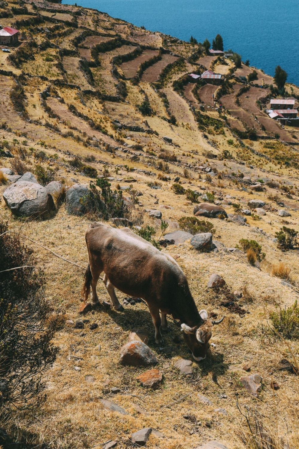 An Afternoon in Taquile Island, Peru (27)