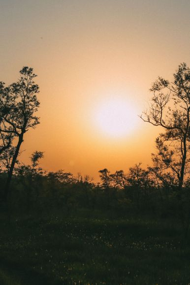 The Search For The One-Horned Rhino... In Chitwan, Nepal (56)